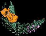 Nine Sisters Botanicals